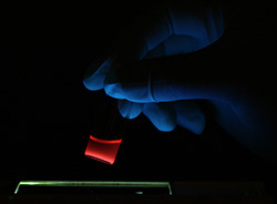 Photo of a vial of anti-cancer nano ships glows red under a black light.