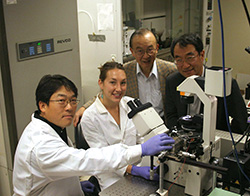 Photo: from L to R, Brian Seunghan Oh, a materials science postdoc in the Jacobs School's Department of Mechanical &  Aerospace Engineering; Karla Brammer, a Jacobs School materials science graduate student; Jacobs School bioengineering professor Shu Chien; and materials science professor Sungho Jin.