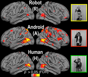 fMRI with Robots