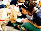 Therapy Dogs (Photo / Lester Cacho)