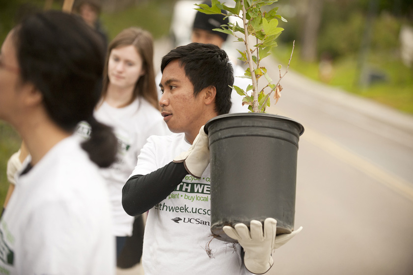 A student holds up a potted tree to be planted along Gilman Drive. The tree planting was part of UC San Diego's Earth Week celebrations. In addition to the tree planning, the week-long celebration included a resource fair and a green job fair, a fair trade expo, workshops and a festival at Muir College. <br/> <em>Photos by Erik Jepsen</em>
