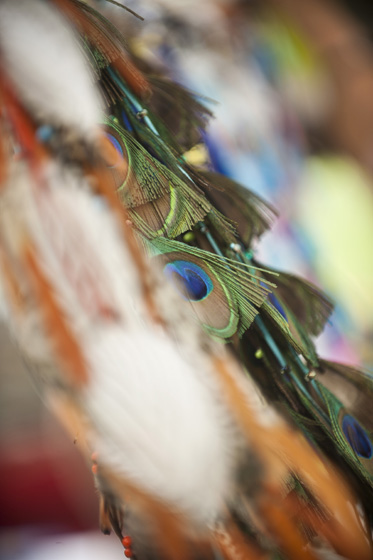 A large variety of feathers were on display at the Vendor booths.