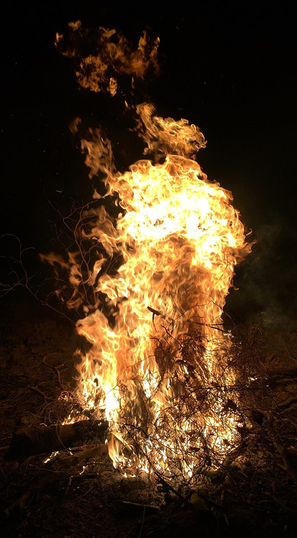Image of fire. Courtesy of Mang Lin.