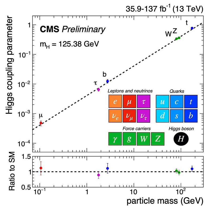 Mass of elementary particles and the strength of their interaction with the Higgs field.