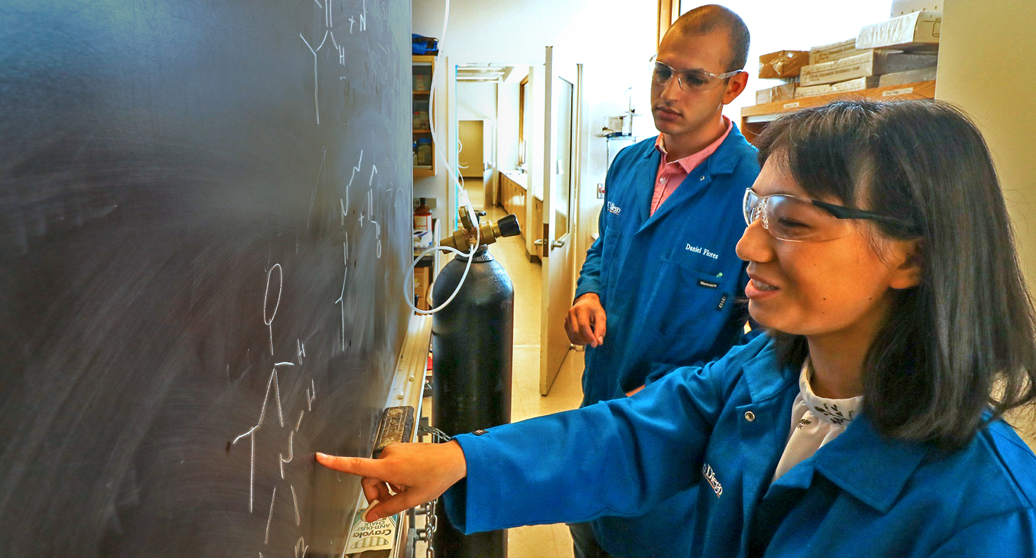 Graduate and undergraduate students work together in Valerie Schmidt's lab. Photo by Michelle Fredricks