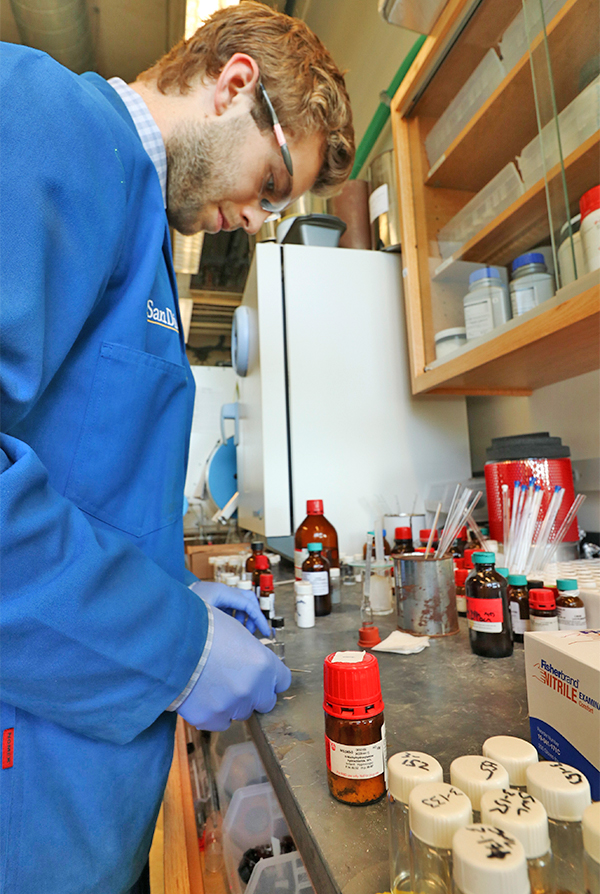 Graduate student Sam Lardy at work in the Schmidt Group lab. Photo by Michelle Fredricks