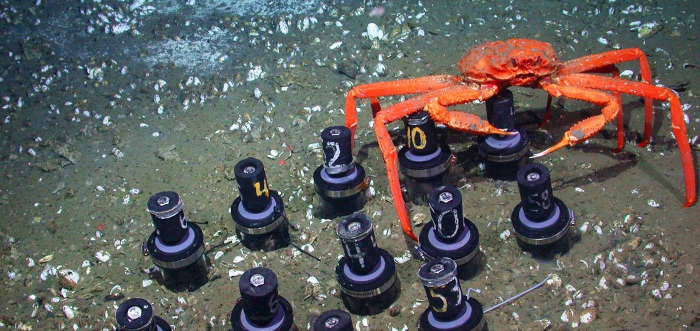 scientists call for new stewardship of the deep ocean earth u0027s