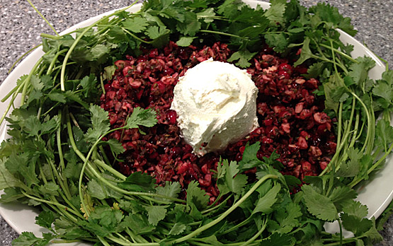 <p>Cranberry Salsa: one of the many healthy recipes freatured in Food for Thought: Healing Foods to Savor, authored by nutritional experts at UC San Diego Moores Cancer Center.</p>
