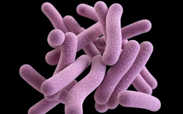 Image: Medical illustration of tuberculosis. Image courtesy of the CDC.