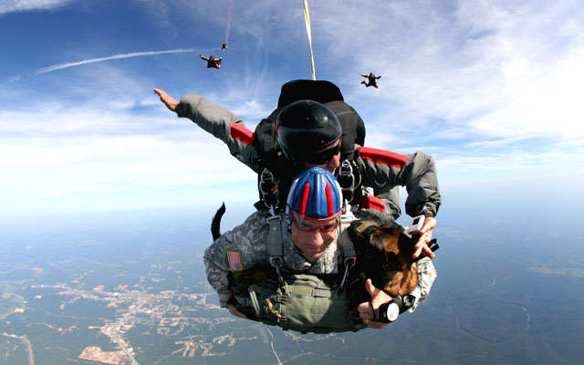 Researchers tested first-time, tandem skydivers to measure key immune response indicators. Image from pixabay