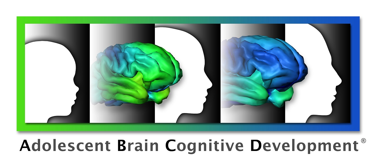 Data Released From Adolescent Brain Development Study Led By Uc San