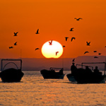 New Study Suggests Overfishing in One of World's Most Productive Fishing Regions