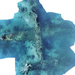 Two Missing World War II B-25 Bombers Documented by Project Recover Off Papua New Guinea