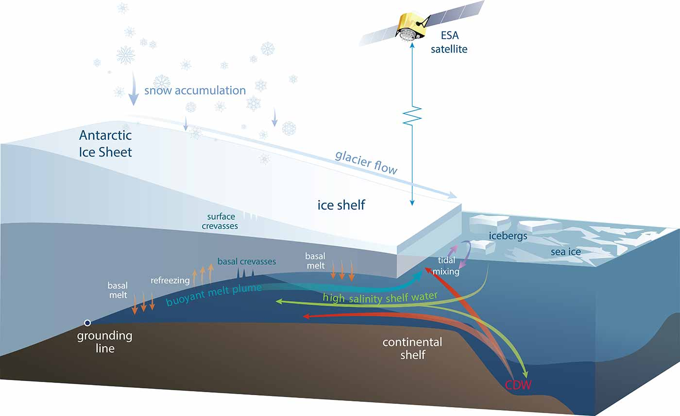 Photo: Schematic diagram of an Antarctic ice shelf showing the processes causing the volume changes measured by satellites.