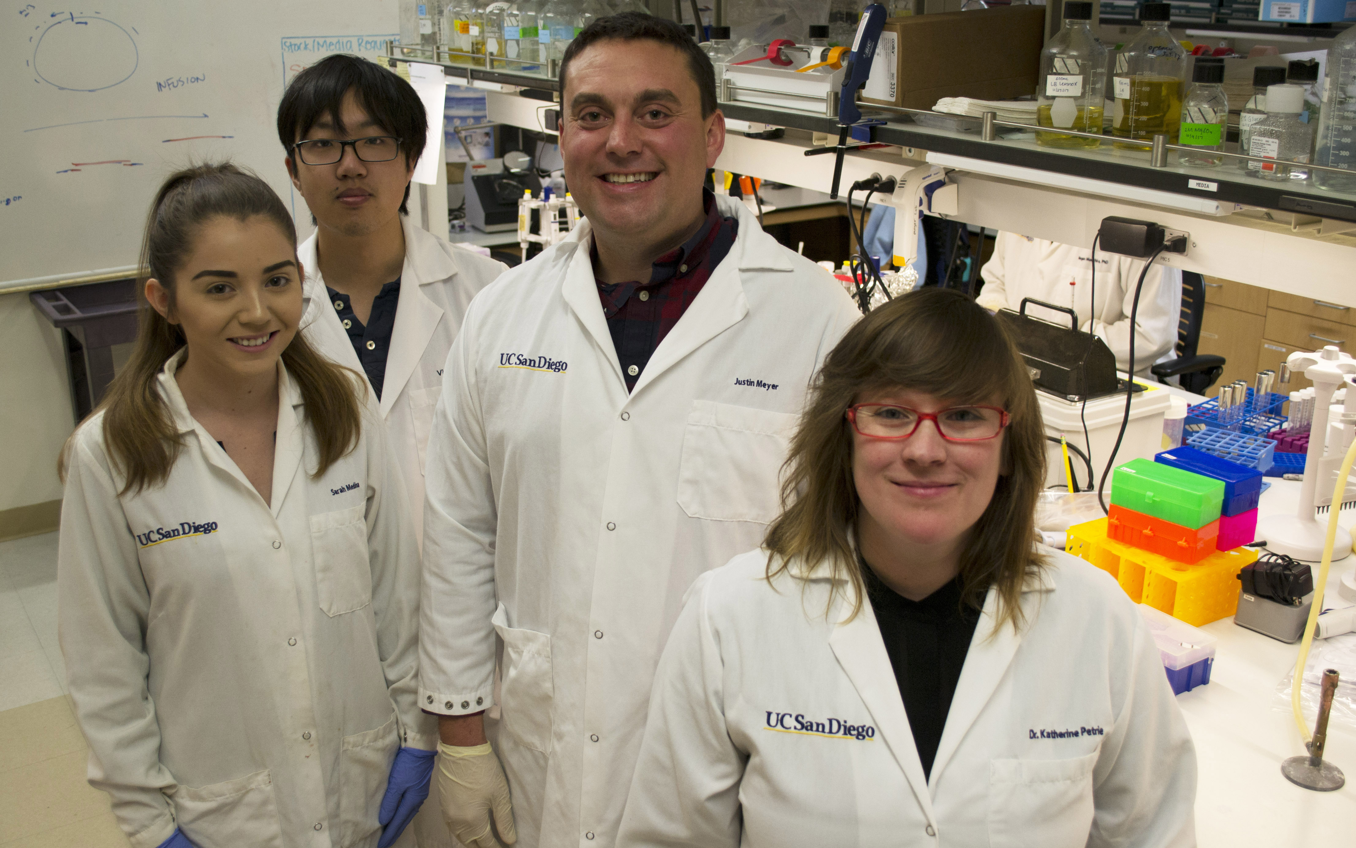 In the laboratory: Sarah Medina, Victor Li, Justin Meyer and  Katherine Petrie.