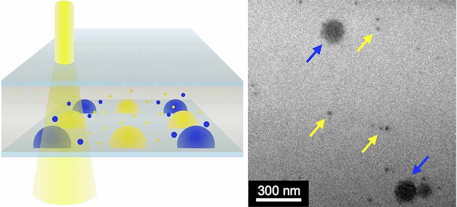 Image: By mixing combinations of gold nanoparticles (yellow arrows) with other nanoscale crystals (blue arrows) in the LCTEM (at left), the chemists showed their technique works