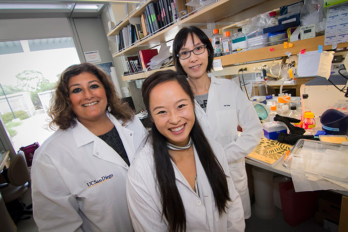 Undergraduate Mandy Che with mentors Dr. Sheikh and Dr. Liang