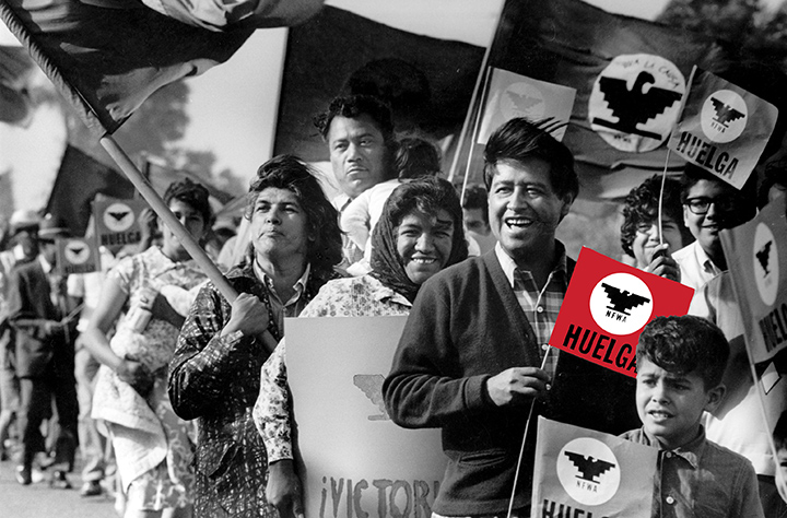 Image result for chicano movement