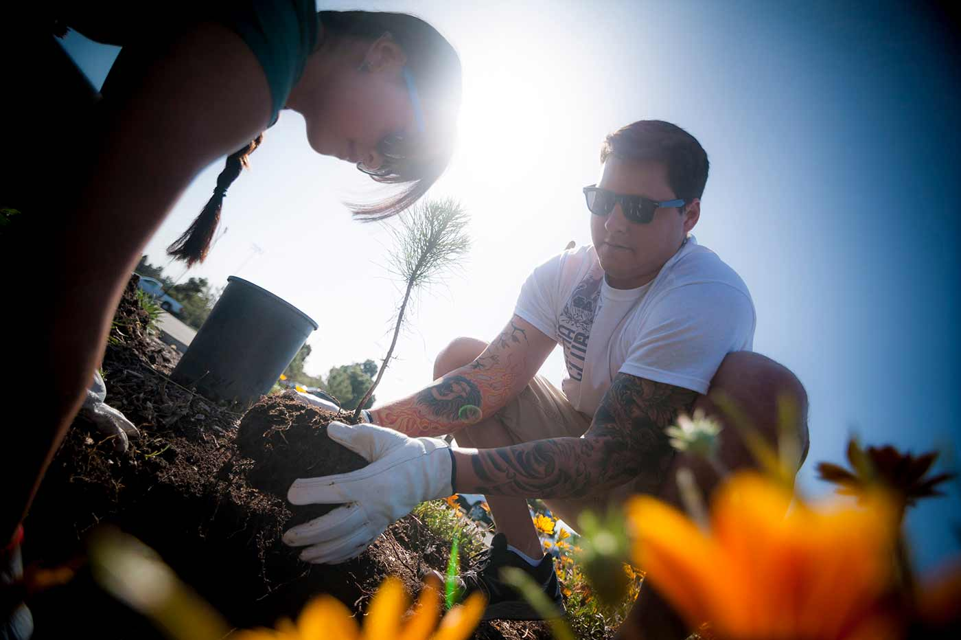 UC San Diego students planting a tree