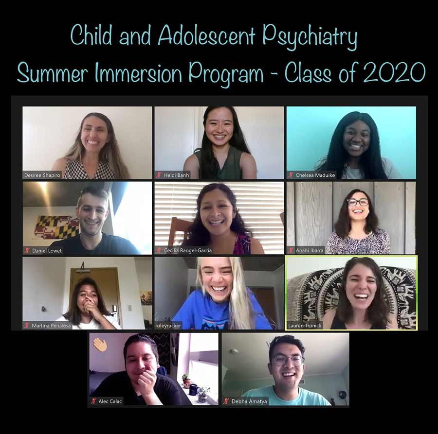 Child and Adolescent Psychiatry Inclusive Excellence Summer Program on zoom.
