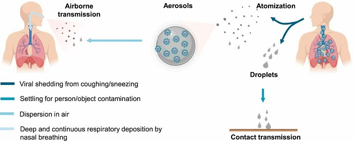 COVID-19 is transmitted via droplets for airborne and contact transmission
