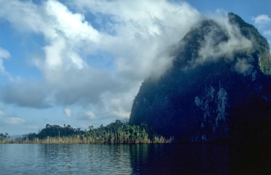 <p>Forest islands, such as this one in the Chiew Larn Reservoir in Thailand, were studied by the researchers to examine the ecological impacts of fragmentation. Photos by Antony Lynam</p>