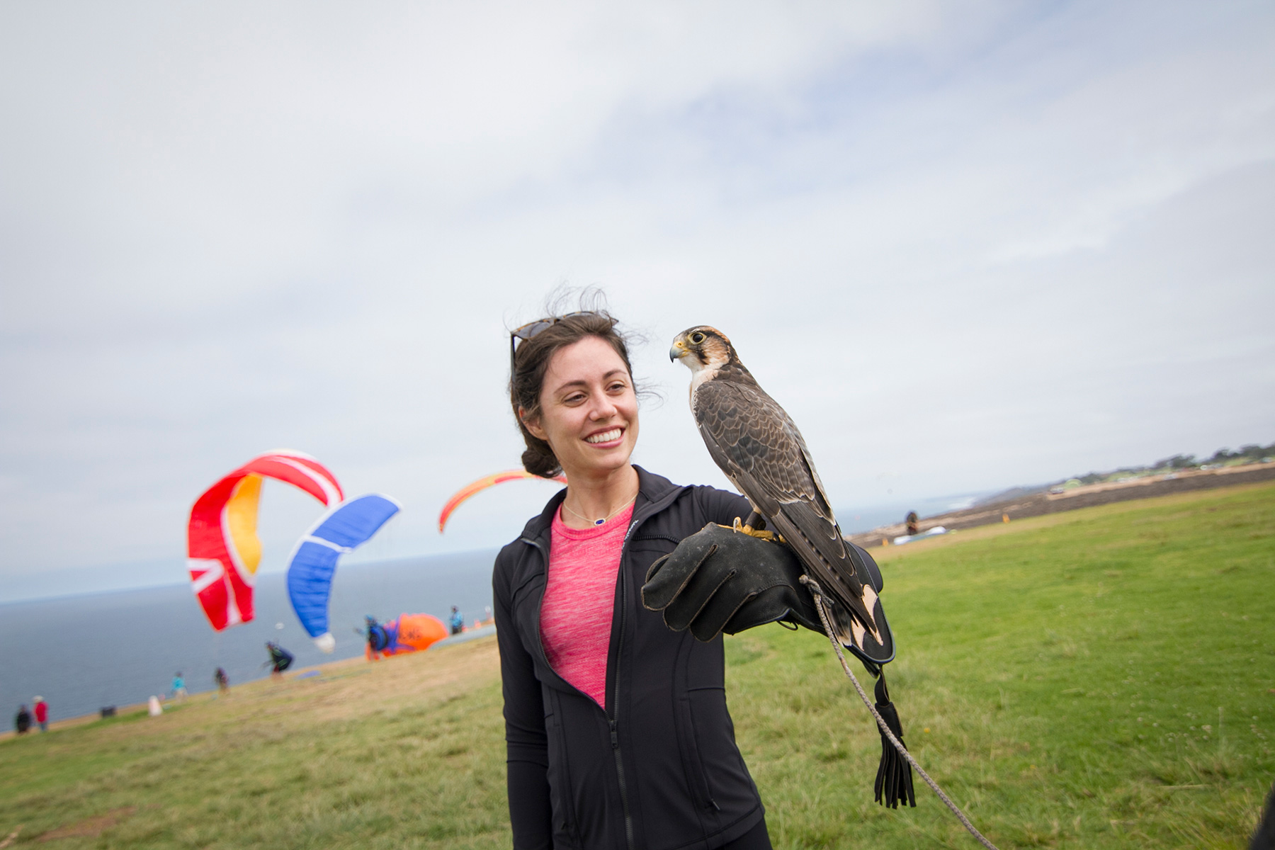 Educator with falcon at a paragliding spot near a beach cliff