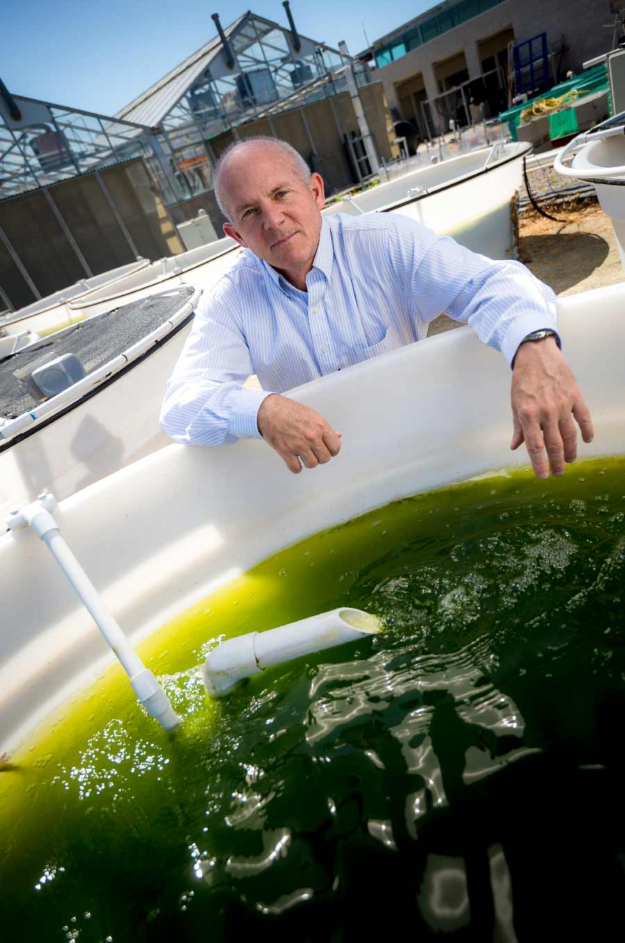 Genetically engineered algae UC San Diego