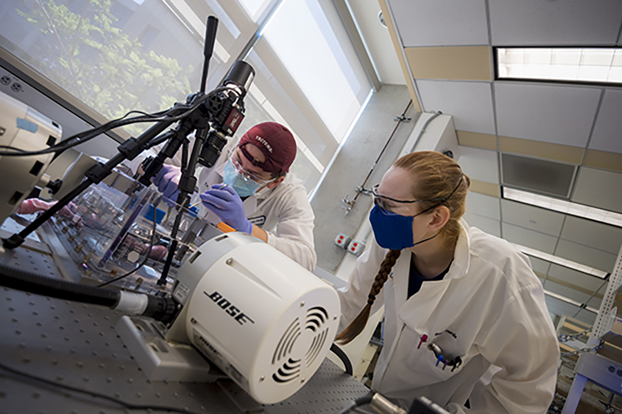 Two students conduct research in the Cardiac Mechanics Research Group