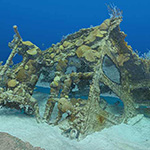 UC San Diego and Bermuda Officially Launch First Digital 3D Shipwreck Mapping Website