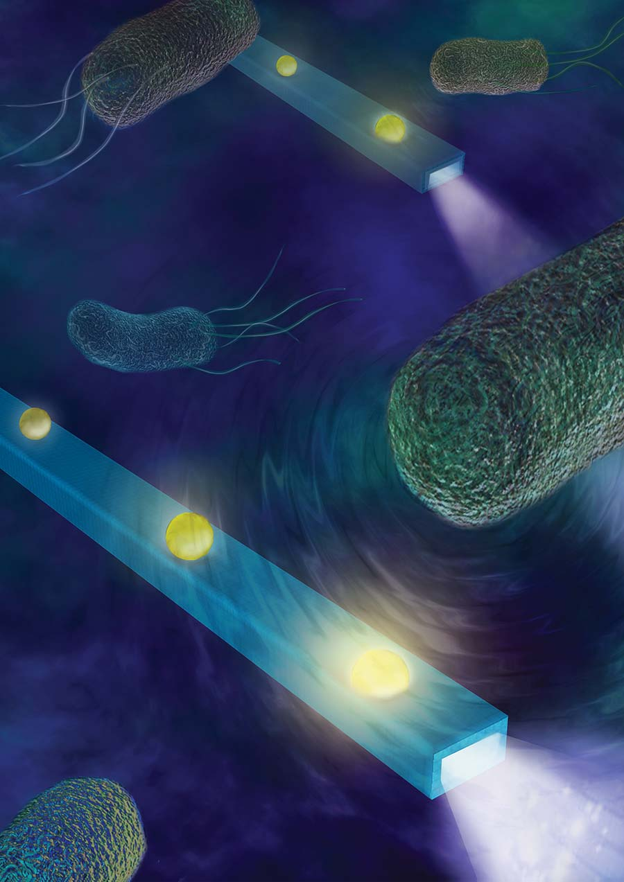 Nano Fiber Feels Forces and Hears Sounds Made by Cells