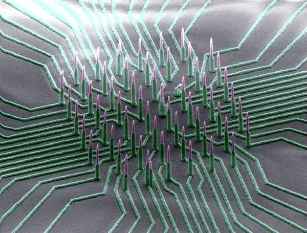 Neuron-reading nanowire