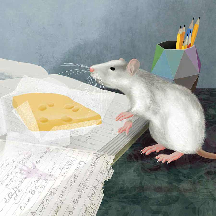 illustration of rat with cheese