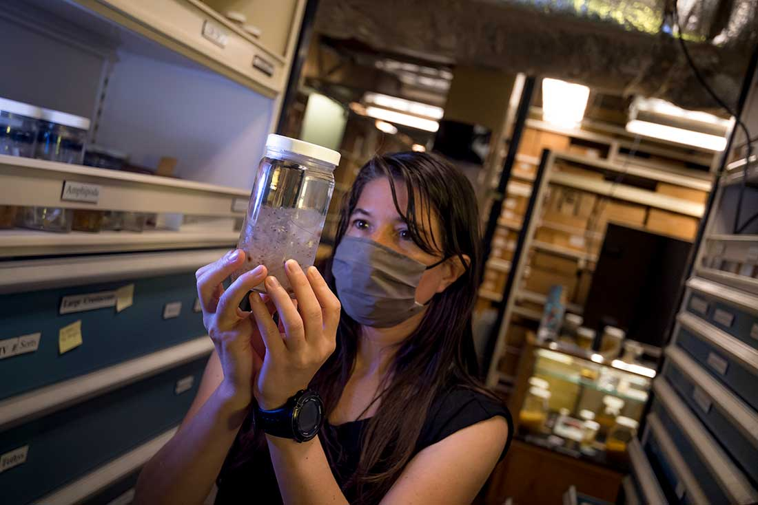 Moira Decima inspects a jar of salps.
