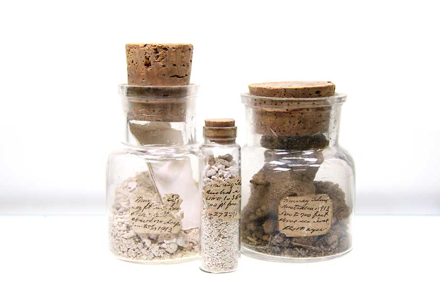 Samples of marine and terrestrial sediments from the collection of Carl Hubbs.