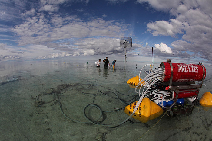 Photo: The researchers collected information on seawater at Heron Reef using an integrated sensor network