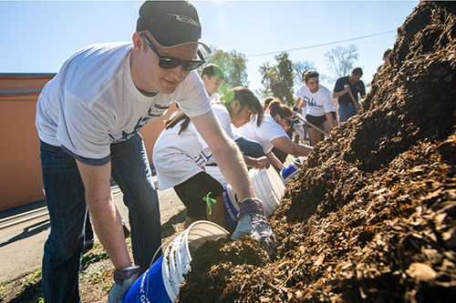 Volunteers gather mulch
