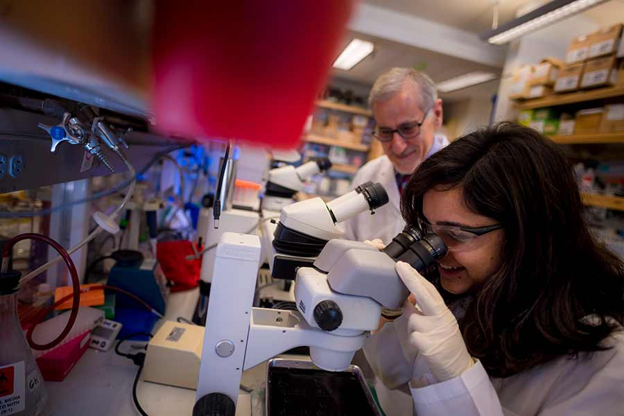 UC San Diego biological sciences graduate student Anupriya Tripathi in the lab