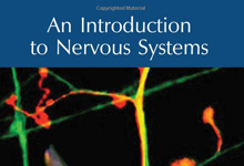 An Introduction to Nervous Systems