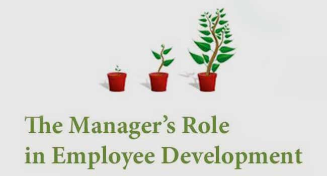 The Manager's Role in Employee Development