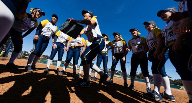 UCSD softball