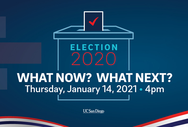 Election 2020. What Now? What's Next webinar graphic.