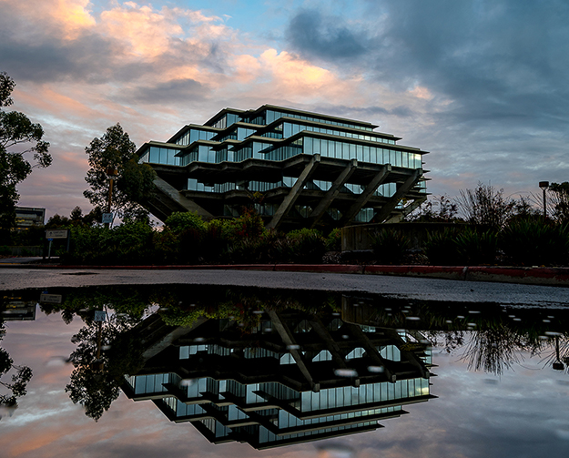 Geisel Library reflection.